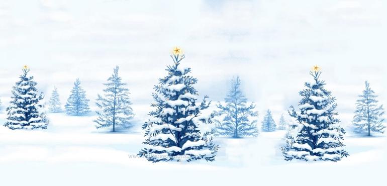 Van Schaack Christmas Letter 2003